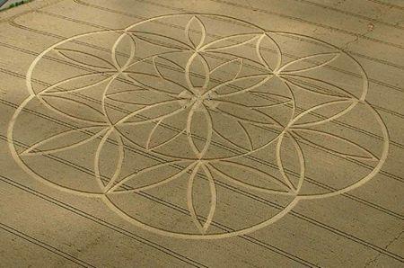 450px-Flower_of_life_Crop_Art_2003